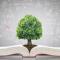 3 mitos sobre educación financiera
